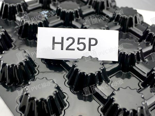 25mm排水板